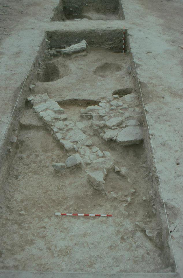 Excavación de Oliva