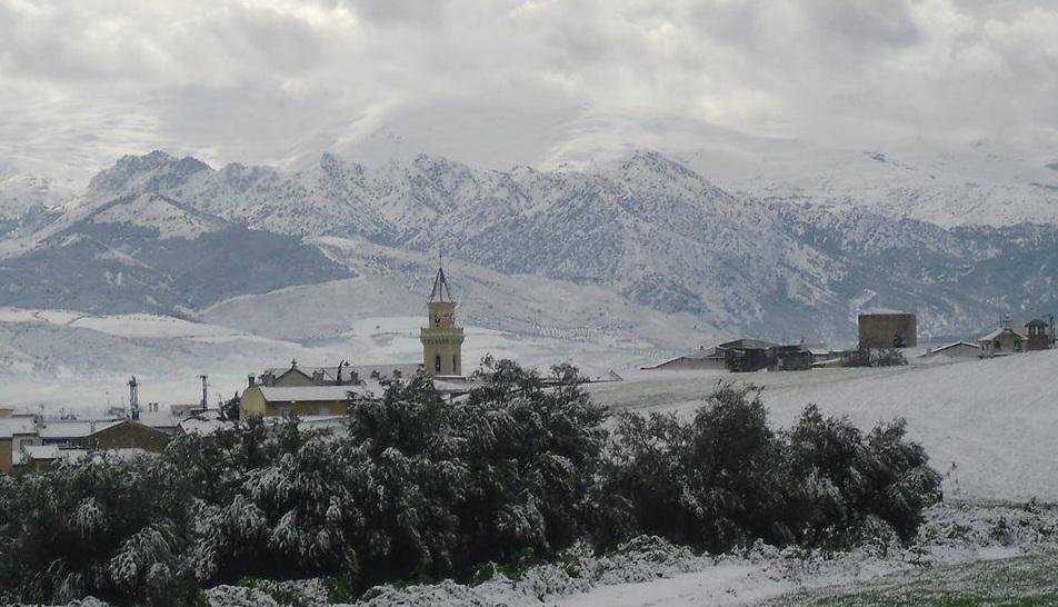 Gabia Grande nevada