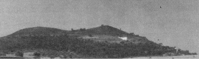 Monte Vive años 50