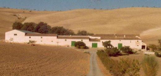 Cortijo de la Jara , panoramica